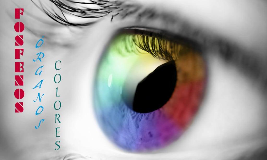 Fosfenos órganos y colores