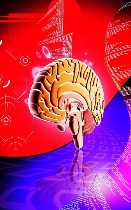 Cerebro reptiliano