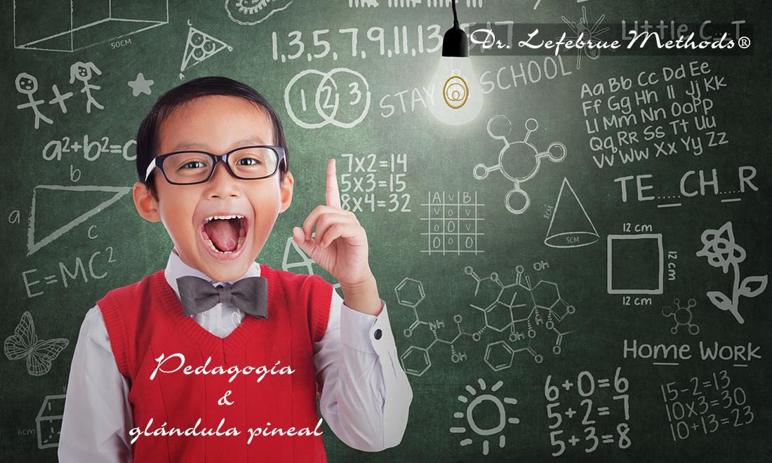 Pedagogía y glándula pineal