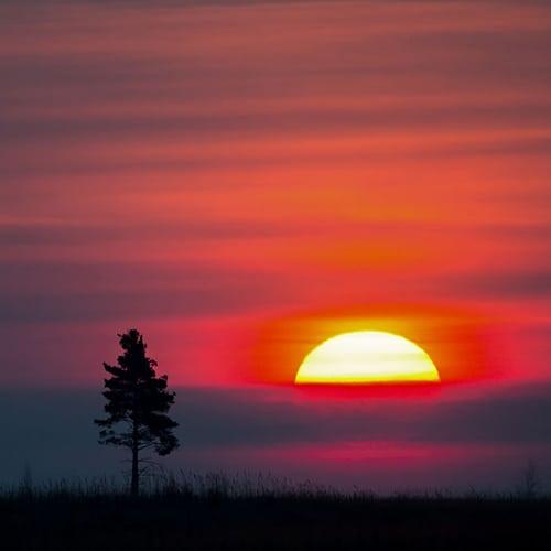 la magia del solsticio de verano